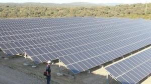 huerto-solar-cordoba-644x362
